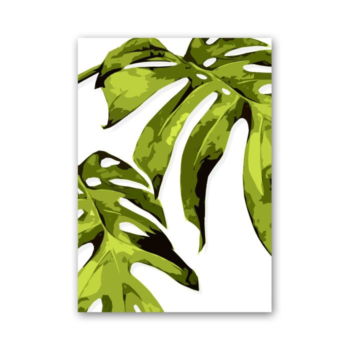 Monstera -A3-Lime